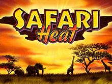 Safari Heat на доступном зеркале
