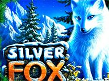Silver Fox в казино Вулкан Платинум