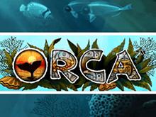 Играть на деньги в автомат Orca