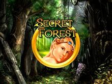 Играть на зеркале Вулкн в автомат Secret Forest
