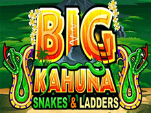 Слот Big Kahuna Snakes and Ladders в Вулкан Платинум