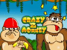 Игровой автомат Crazy Monkey 2 в Вулкан Платинум